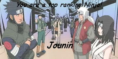 What Is Your Ninja Rank?