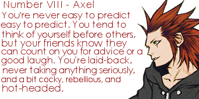 Organization XIII - Which member Are You?