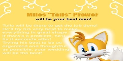 Which Sonic Character Would Be Your Best Man?