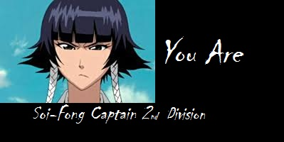 Which Bleach Captain Are You?