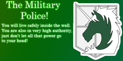 What Part Of The Military Would You Be In?