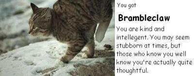 What Warrior Cat Are You?