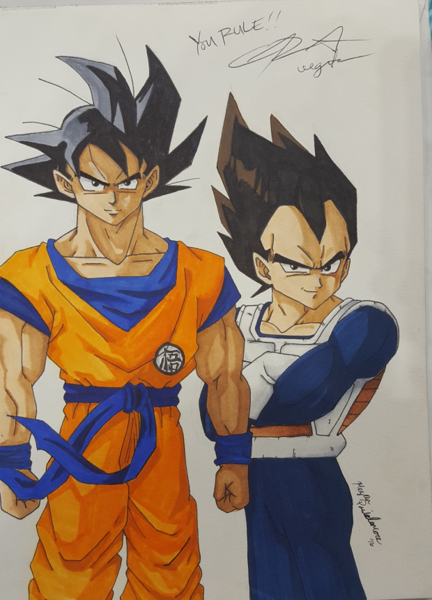 Goku and Vegeta Autographed