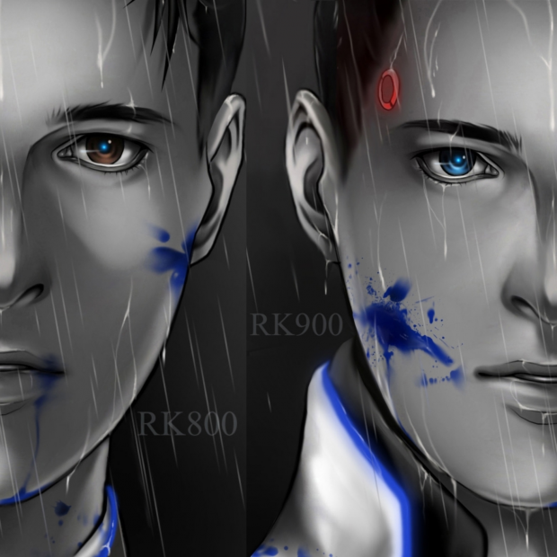 RK800 X RK900 CONNOR