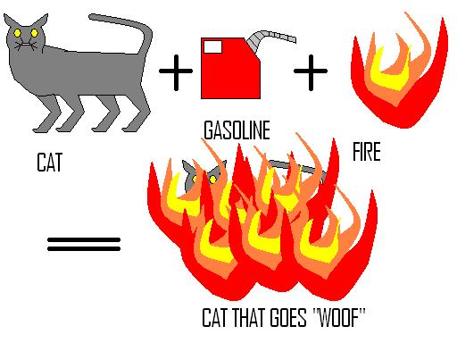 "How to make a cat go ""woof"""
