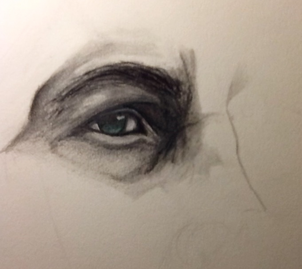 Eye of the Lion (Cullen WIP)