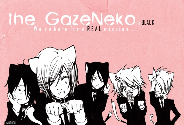 . the GazeNeko .