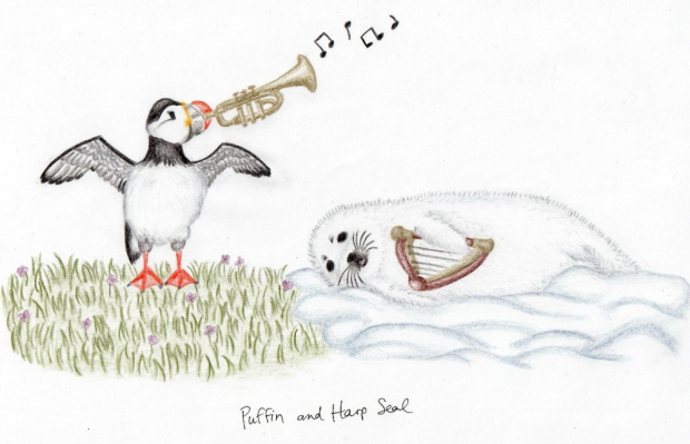 Puffin and Harp Seal