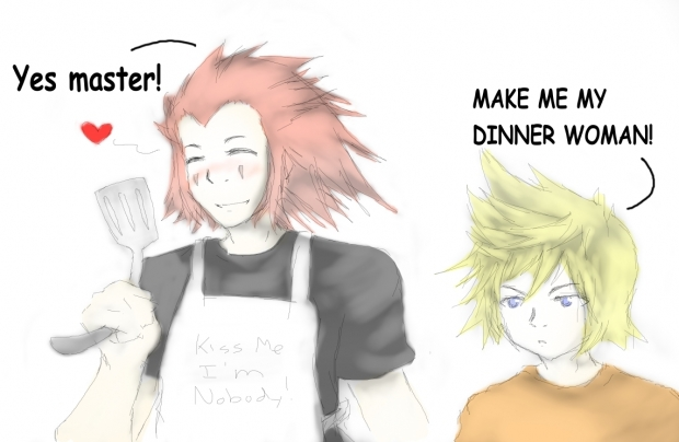 Axel and Roxas' Regular Evening