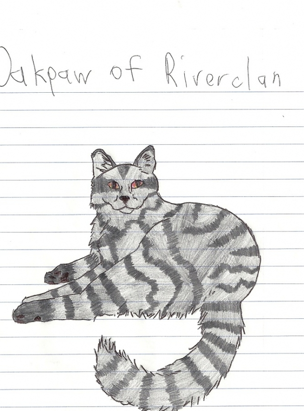 Oakpaw of Riverclan