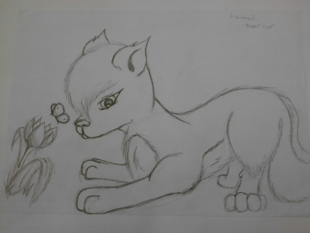 wolf/dog with flower + butterfly