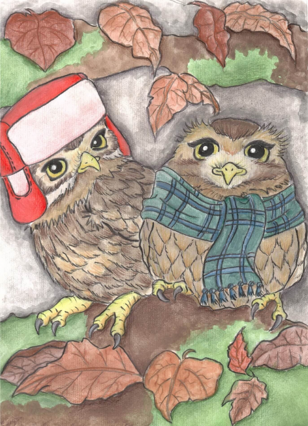 Autumnal Little Owls