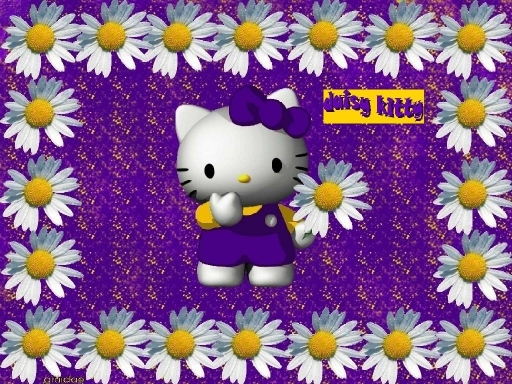purple daisy kitty