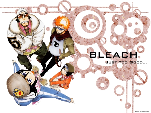 Bleach - Too Good!
