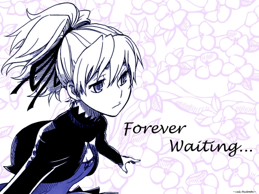 Yin - Forever Waiting