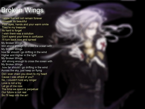 X~My Broken Wings~X