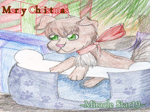 ~Merry Christmas Molly~ :D