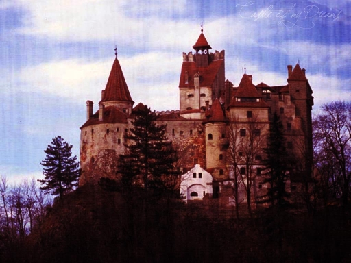 Castle of my dreams