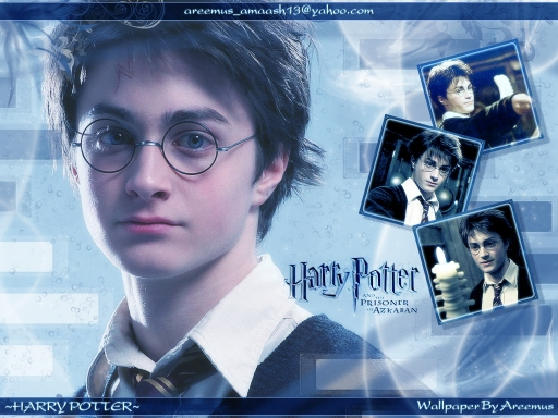 ~Harry Potter P of A~