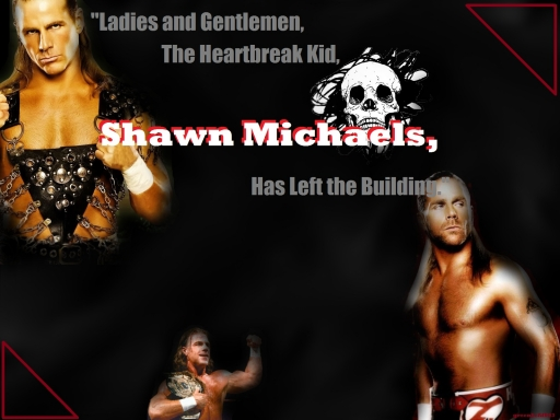Shawn Michaels for Cat14