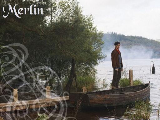 Merlin at the waters edge