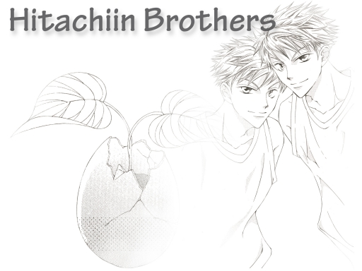 Hitachiin Brothers