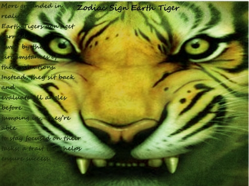 Earth Tiger (my zodiac sign)