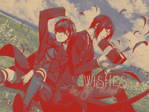 Wishes-on the wind~