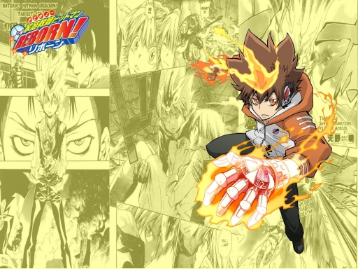 Tsuna over the pages