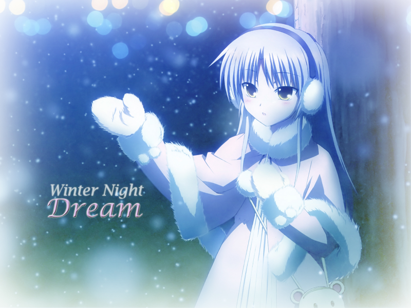 Winter Night Dream