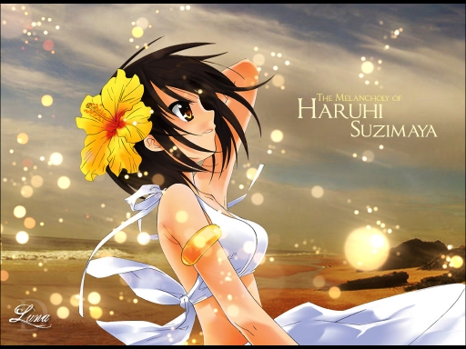 Haruhi In The Beach
