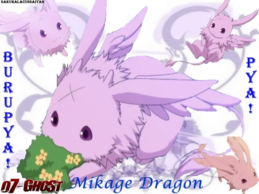 *Mikage Dragon*