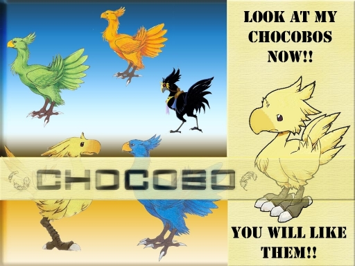 Chocobo Obsessed